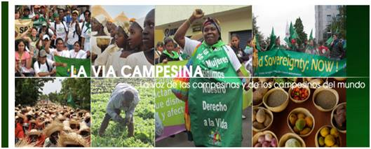 Via Campesina Indonesia 3